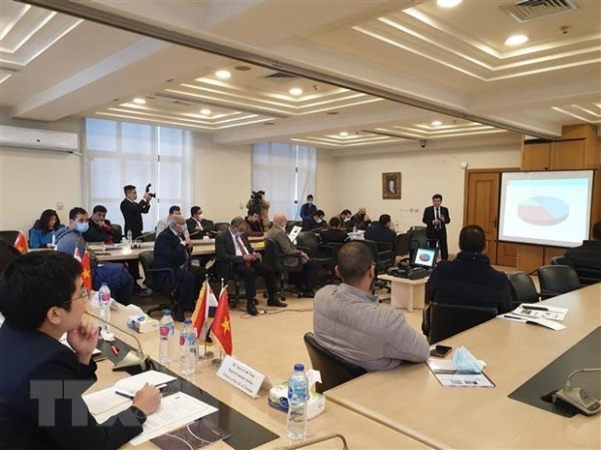 Online exchanges connect Vietnam, Egypt enterprises amid COVID 19