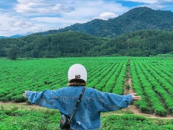 quang nam travel guide to a memorable trip