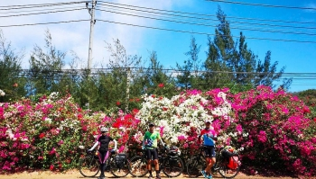 discover beautiful coastline road and pristine beaches from vung tau to binh dinh