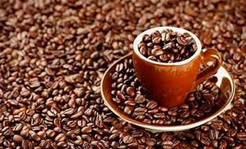 increase in vietnamese coffee volume exported to eu