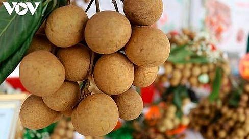 vietnam to resume exporting fresh fruit to us market despite covid 19