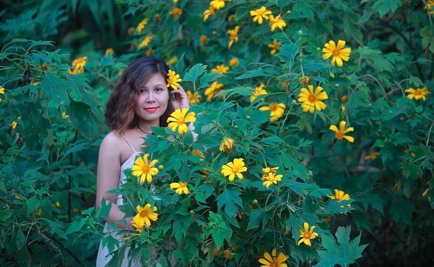 4029 wild sunflower 1