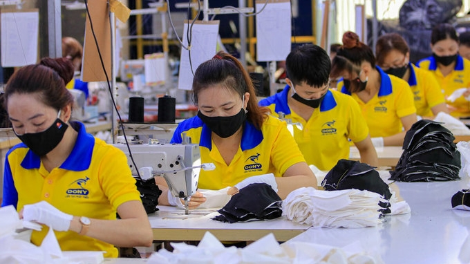 vietnamese dutch businesses urged to optimise evfta