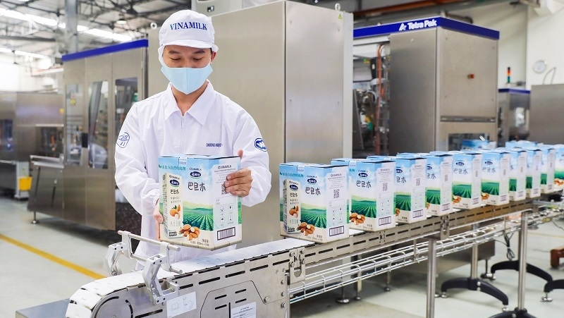 Vinamilk exports large shipments of seed, condensed milk to China