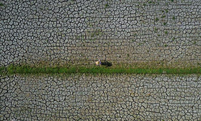 Vietnam needs $35 bln to meet climate adaptation demands next decade: PM