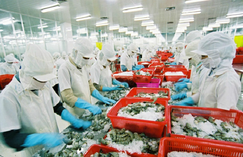 US removes anti-dumping duties on Vietnamese frozen shrimp products