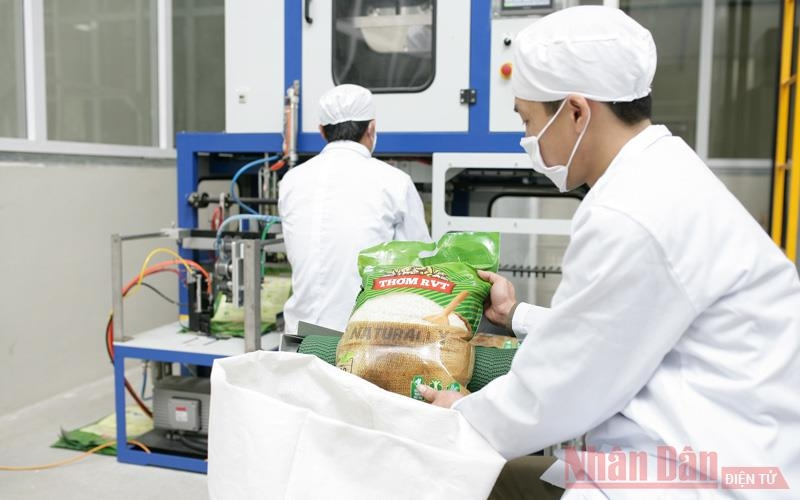 0526 rice industry 4