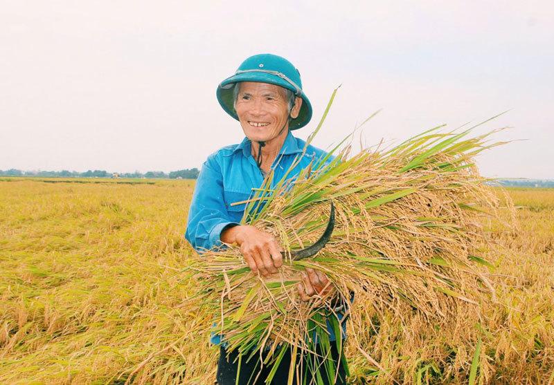 5019-farmer