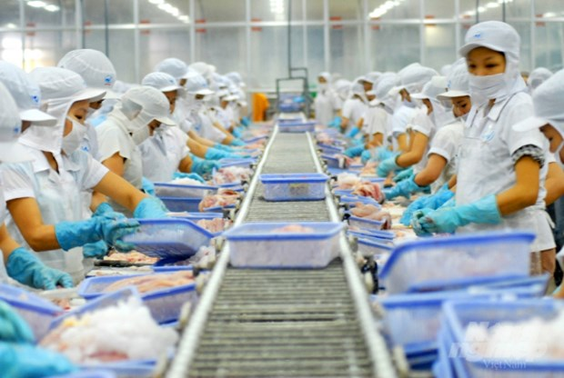 Vietnam's aquatic exports to Taiwan rise sharply amidst COVID-19