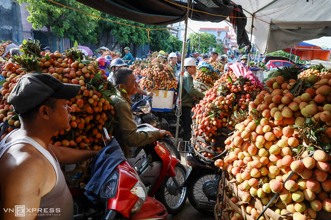 Lychee-growing localities receive preorders from foreign traders