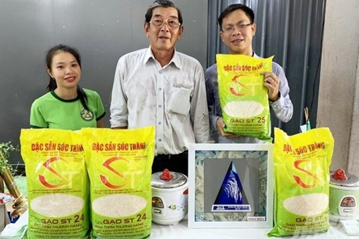Rice varieties named ST24 and ST25 are successfully developed by Mr. Ho Quang Cua and a team of Vietnamese scientists and have been granted a patent in Vietnam. (Photo: Labor Newspaper)