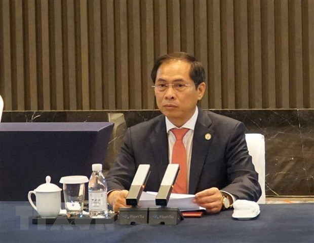 Vietnamese Minister of Foreign Affairs Bui Thanh Son (Photo: VNA)