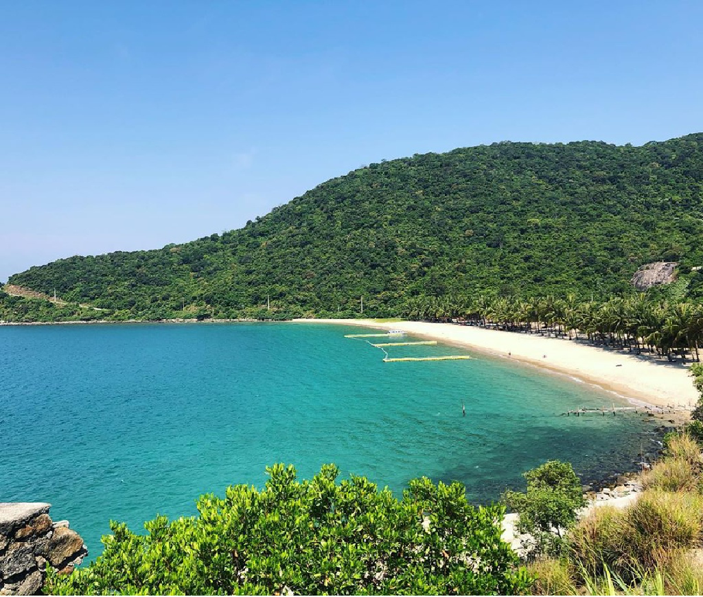 top vietnam destinations unforgettable coral diving on cham islands in hoi an