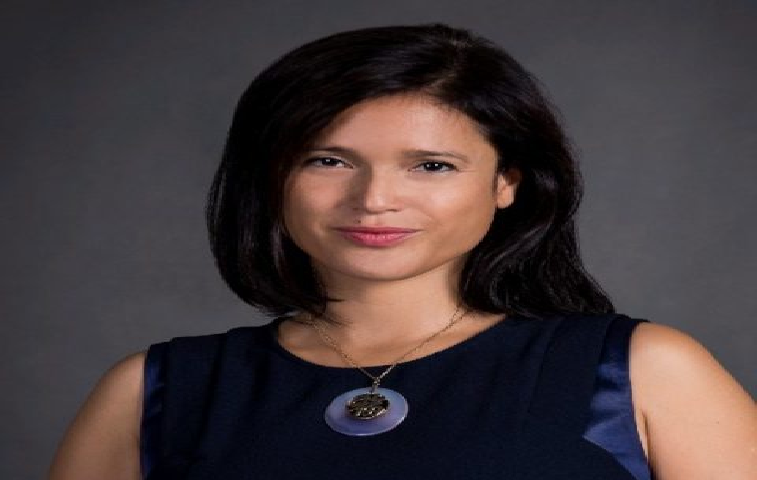 celine charpiot vietnamese french ceo brings two countries closer through technology