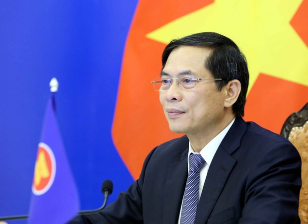 Minister of Foreign Affairs Bui Thanh Son (Photo: VNA)