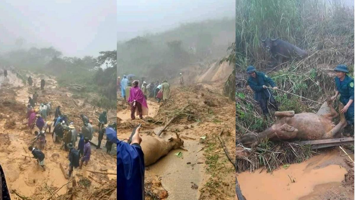 4001 landslides