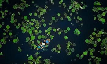Vietnamese Photo Praised at International Contest
