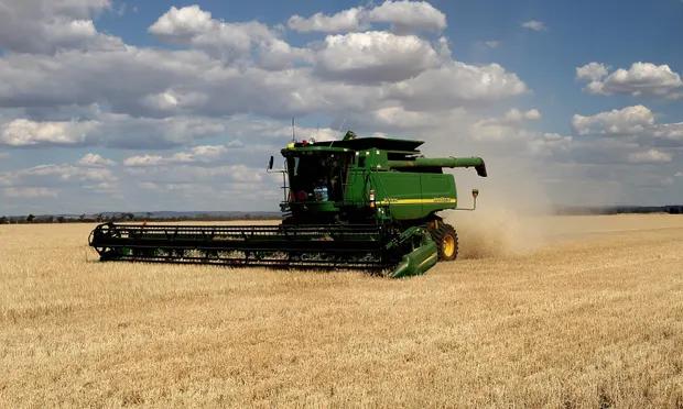 5322 barley