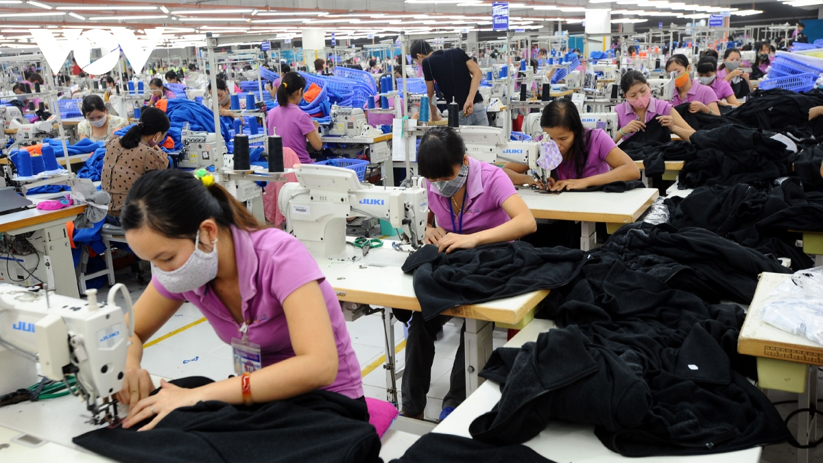 evfta offers ample room for vietnam netherlands cooperation in fashion industry