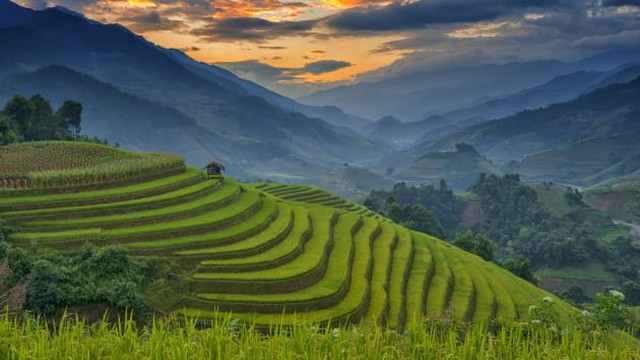 mu cang chai highlights vietnam beauty says cnbc