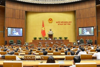 Vietnam National Assembly: History, functions and components