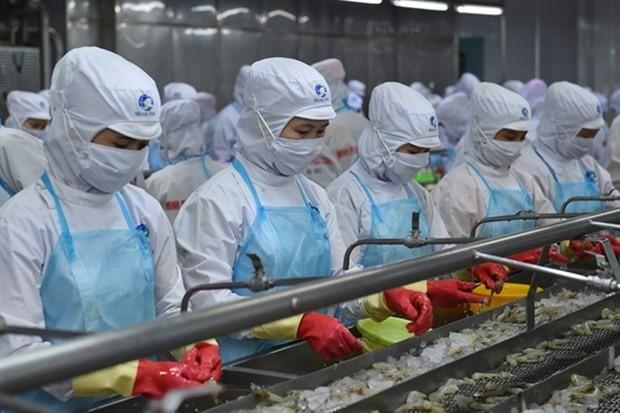 vietnams shrimp exports remain firm in the coronavirus pandemic