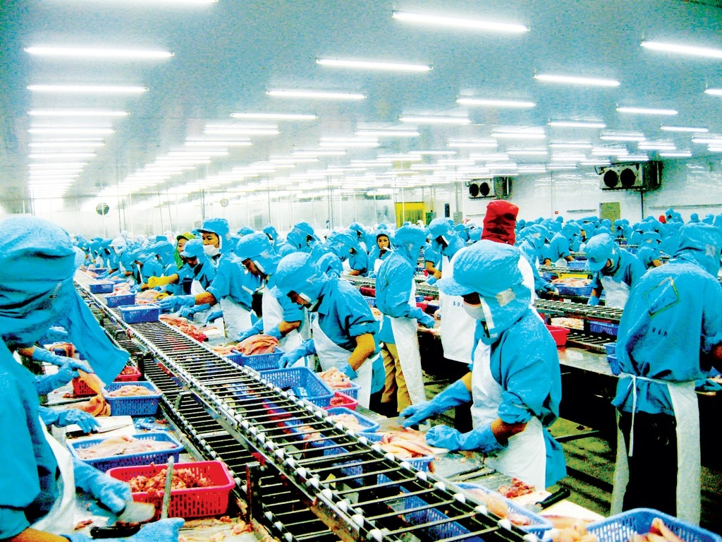 experts many sectors in vietnam economy will recover quickly
