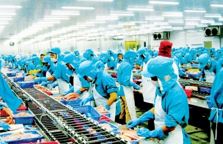 Experts: Many sectors in Vietnam economy will recover quickly
