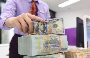 vietnamese currency predicted to weaken this year