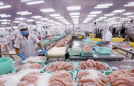 Enterprise establishment in Vietnam surges 36% in May