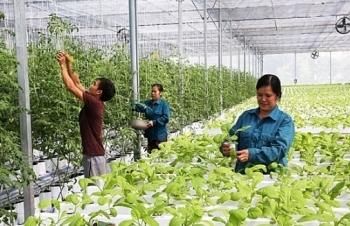 remarkable improvement in hanois rural modernization