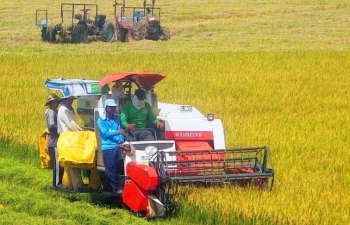 mekong delta in the process of agriculture transformation