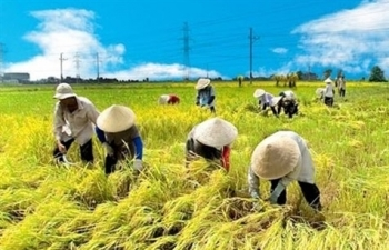 vietnam expects to have 60 of rural communes to meet new standards in 2020