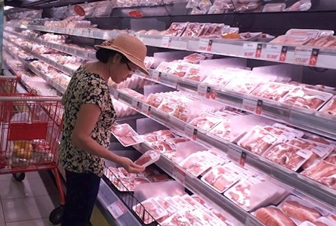 vietnam to begin importing live pigs from thailand from june 12