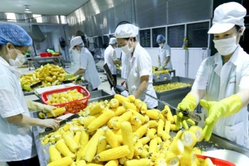 ministry of agriculture retains export target of over usd 41 billion in 2020