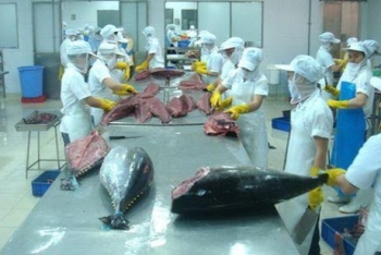 eu to exempt tax on 11500 tonnes of vietnamese tuna