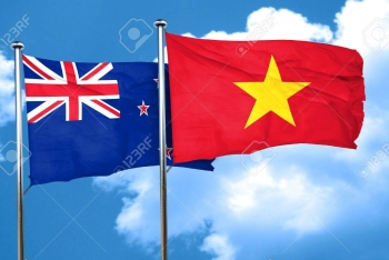 vietnam and new zealand target usd 17 billion of trade value in 2020