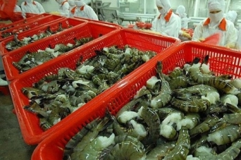 vietnams shrimp exports to canada surge 32