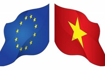 vietnam issued circular on certificate of origin in evfta