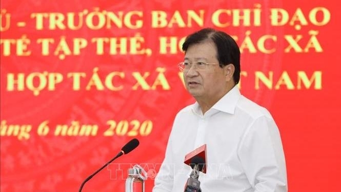 deputy pm asks for measures to boost cooperatives growth
