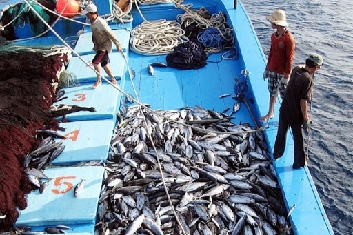 "Vietnam stressed the goal for EU to remove ""yellow card"" over illegal fishing"