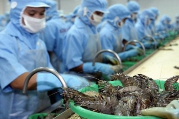 vietnams shrimp exports increased 57 in the first half of 2020