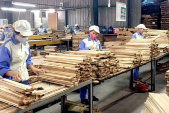 vietnamese wood exports recover during the first half of year