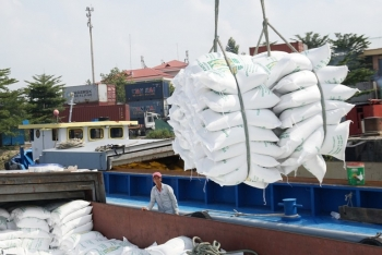 vietnam grabs position as second largest rice exporter from thailand