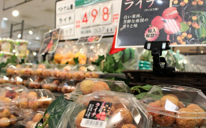 vietnamese lychee to open japanese market