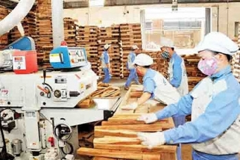 over 20000 export enterprises are ready for evfta opportunities