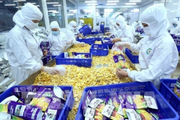 vietnams agricultural exports in july reaches usd 34 billion