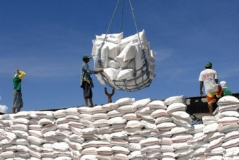 vietnams rice exports to the eu stay modest due to limited quota