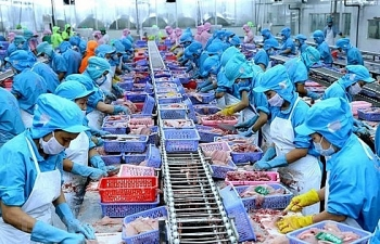 business times appreciates new opportunities in eu vietnam trade
