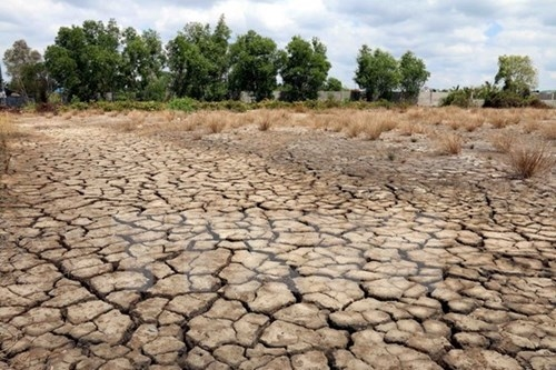 4412 climate change vietnam 2020